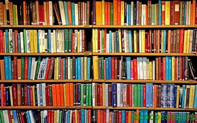 20080403112922-libros